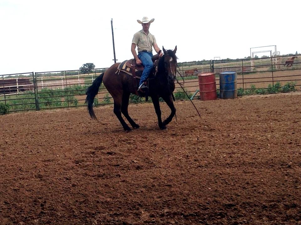 Michael can help you and your horse communication through Natural Horsemanship!